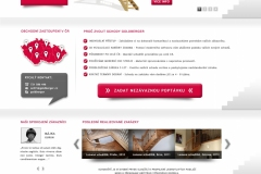 GOLDBERGER-webdesign